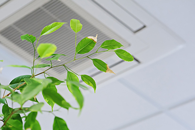 Indoor Air Quality: The Importance of a Well-Maintained Commercial HVAC System