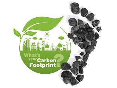 Carbon Cutter